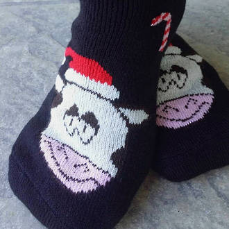 New Zealand Christmas Socks - Cows