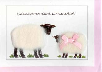 Welcome To Your Little Lamb Gift Card - Girl