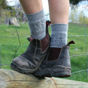 Work or Farm Merino Socks